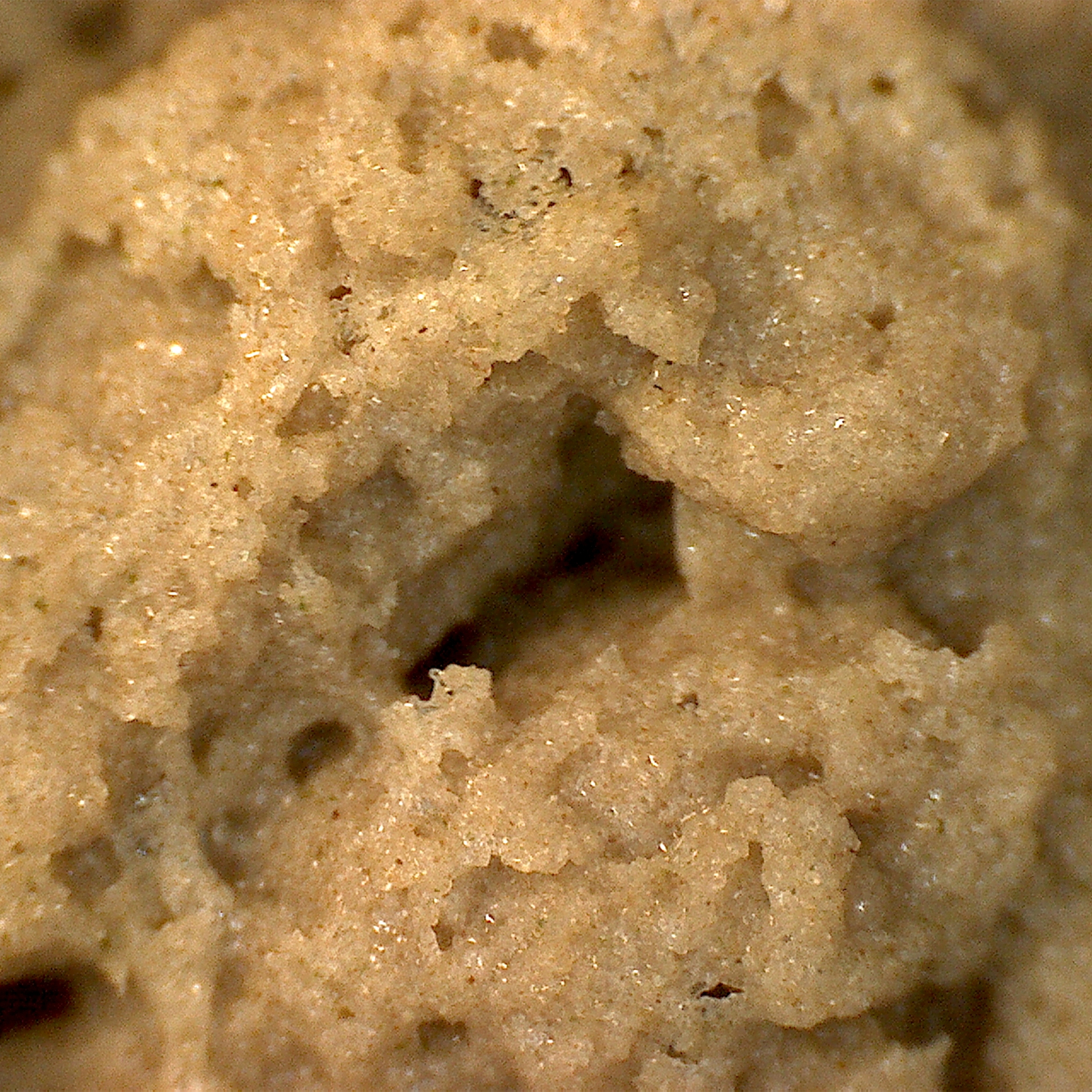 Fresh made bubble hash